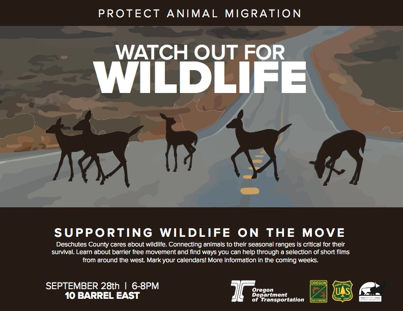 Watch Out for Wildlife at 10 Barrel East, September 28